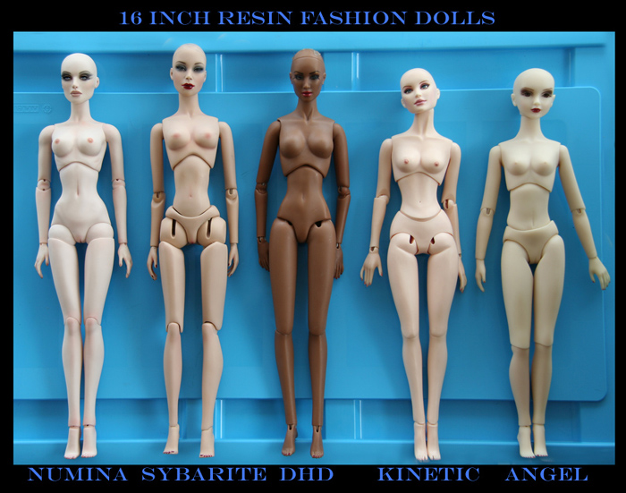 Comparaisons corps fashion dolls: images & liens Alexandra_misc_e13c919107_small